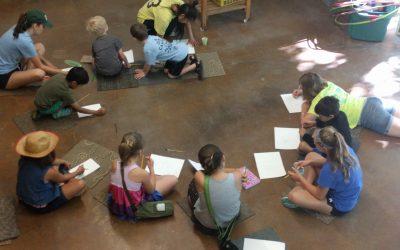 Education Internship